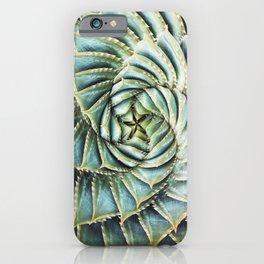Succulent by Zouzounio Art iPhone Case