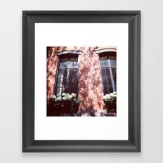 Brownstone + Hydrangeas Framed Art Print