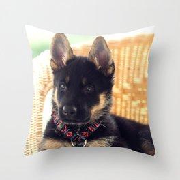 Shepherd puppy in portrait Throw Pillow