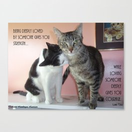 Love Gives Us Strength: Two Cats Canvas Print