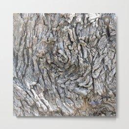 TEXTURES -- Blue Elderberry Bark Metal Print