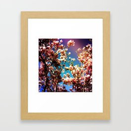 Hold On Magnolia Framed Art Print