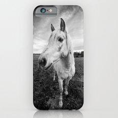 Horse iPhone 6s Slim Case