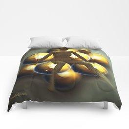 Golden globes  Comforters