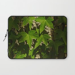 Sunny ivy leafs on a tree bark Laptop Sleeve