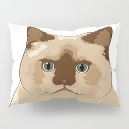 Fluffy CAT Pillow Sham