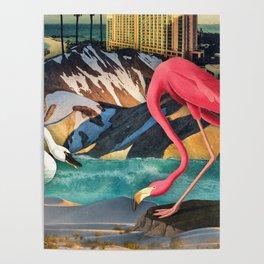 Birds of America :: Flamingo Hotel Poster