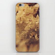 Hello Spring #5 iPhone & iPod Skin