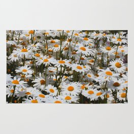 A Field of Oxeye Daisies Rug