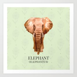 Elephant in Watercolour Art Print