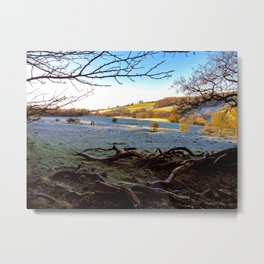 Beauty to Behold. Metal Print