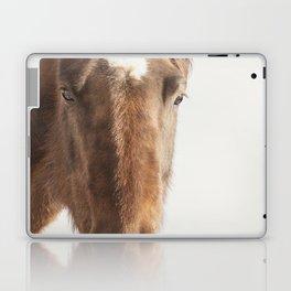 Vintage Style Horse Portrait in Color Laptop & iPad Skin