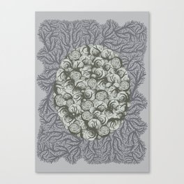 Snails All The Way Down Canvas Print