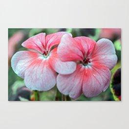 Pink Posies Canvas Print