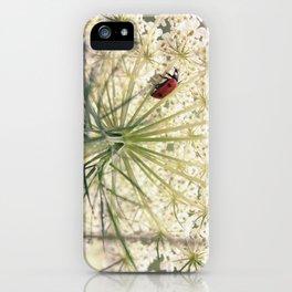 Lacybug iPhone Case