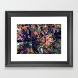 Tropical Schefflera II Framed Art Print