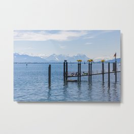 Bodensee and Alp Mountains Metal Print