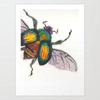 Rainbow Scarab Art Print