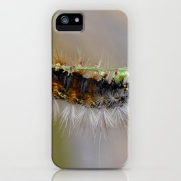 Hang on There Fuzzy Caterpillar 1 iPhone Case