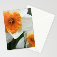 Spring Lovelies Stationery Cards