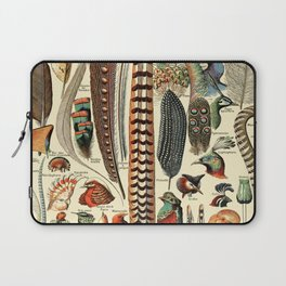 Feathers and Birds Vintage Illustration Drawing by Adolphe Millot of Artsy Wild Bird Feather Vibes Laptop Sleeve