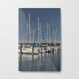 Chesapeake Bay Metal Print