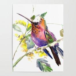 Hummingbird, beautiful decor colorful bird art Poster