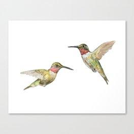 Ruby Throated Hummingbird Watercolor Canvas Print