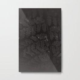 Ferny Details Metal Print