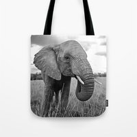 south africa Tote Bags featuring African Elephant, South Africa by Shannon Wild