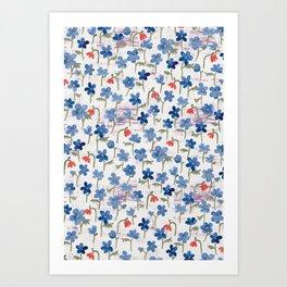 Blue Anemone - Springflowers Art Print