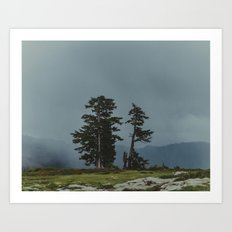 Magic Northwest Forest Art Print