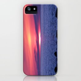 Painted By Nature iPhone Case