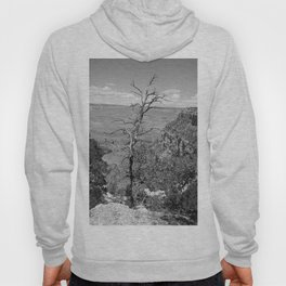 Black & White Tree Hoody