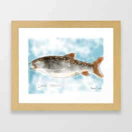 lake trout Framed Art Print