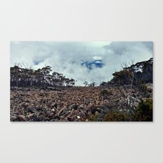The Slopes of Mt. Wellington, Tasmania Canvas Print