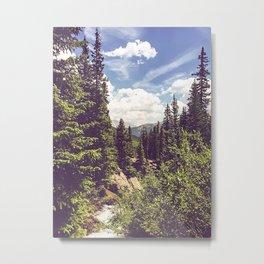 Breck Metal Print