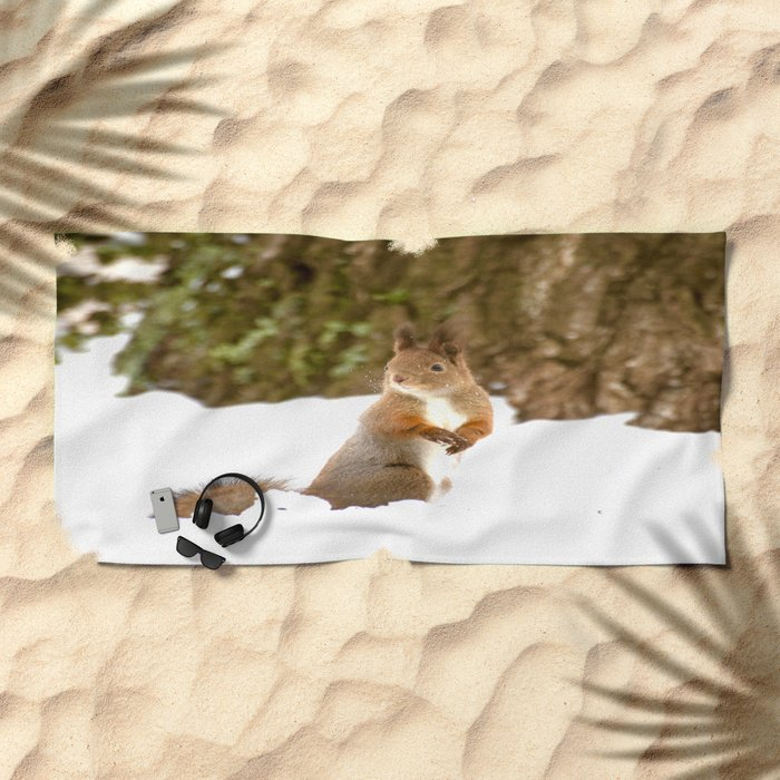 Cute Squirrel In The Forest Beach Towel