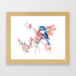 Bluebird and Cherry Blossom Framed Art Print