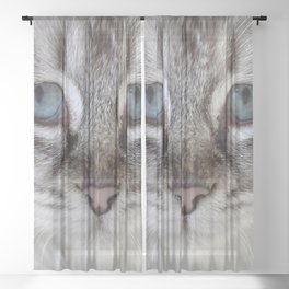 Cat with Blue Eyes Sheer Curtain