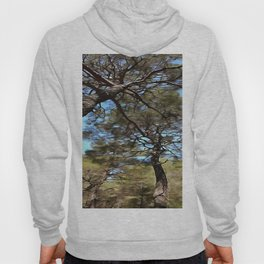 The Tangled Webs Of Trees Hoody