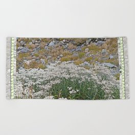 PEARLY EVERLASTING IN AN ALPINE MEADOW Beach Towel