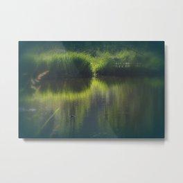 turtle swimming away at Trojan pond, near Goble, Oregon Metal Print