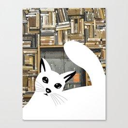 Curios cat I Canvas Print
