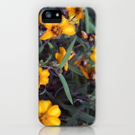 Small Orange Flowers iPhone Case