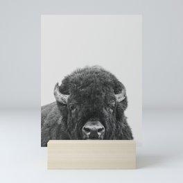 Buffalo Print, Bison Wall Art, Photography Print Mini Art Print
