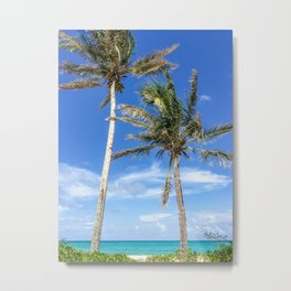 Towering Palm Trees, Blue Sky Metal Print