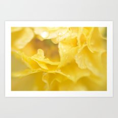 April showers in yellow Art Print