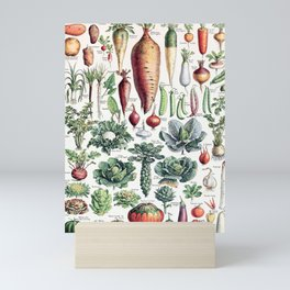 Adolphe Millot - Légumes pour tous - French vintage poster Mini Art Print