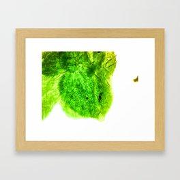 Clover Under Microscope Framed Art Print